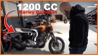 ON RECUPERE UNE BECANE DE CROSS CHEZ HARLEY DE 1200CC ! 😳 (EP : 01/02)