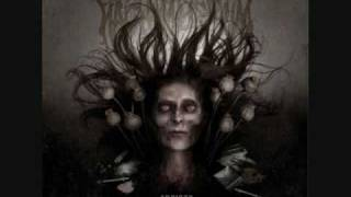 Every Last Drop by Nachtmystium
