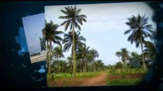 Voyage Benin