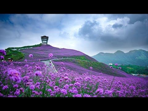 Beautiful Guizhou 🎋