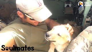 Puppy Is SO Happy To Reunite With Her Soldier Dad | The Dodo Soulmates