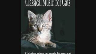 Classical Music for Cats - Calming piano pet music for your cat