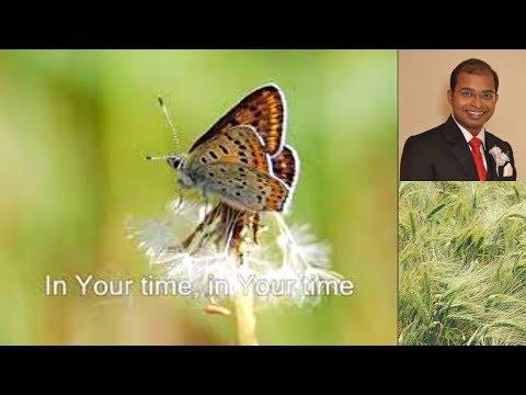 In His Time Mouth organ, harmonica instrumental music hymns lyrics