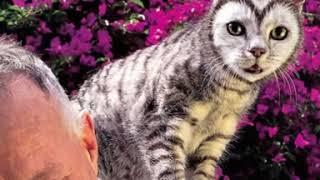 Что вытворяет Матушка Природа 😱??? Необычные окрасы котов~
