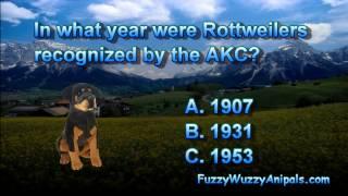Rottweiler History Animal Quiz