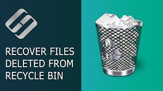 How to Recover Files Deleted From Windows Recycle Bin or With Shift + Del 📁🔥⚕️
