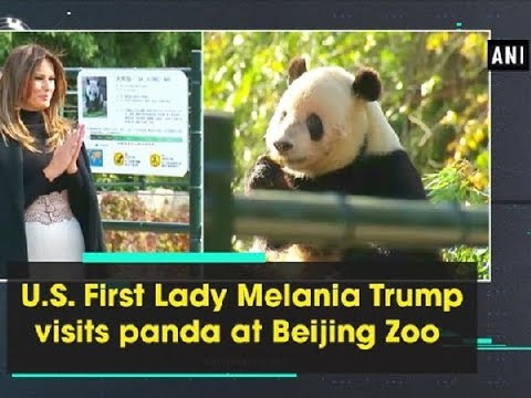 U.S. First Lady Melania Trump visits panda at Beijing Zoo - China News
