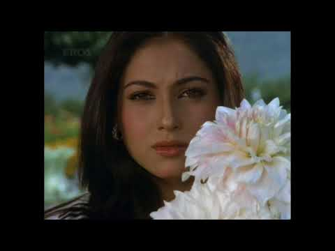 Harjaee (1981) - Tere Liye Palkon Ki