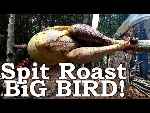 Primitive Fire Cooked WILD BIRD On A Stick (Start-to-Finish)! ASMR (Silent)
