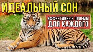 Идеальный сон Советы для всех
