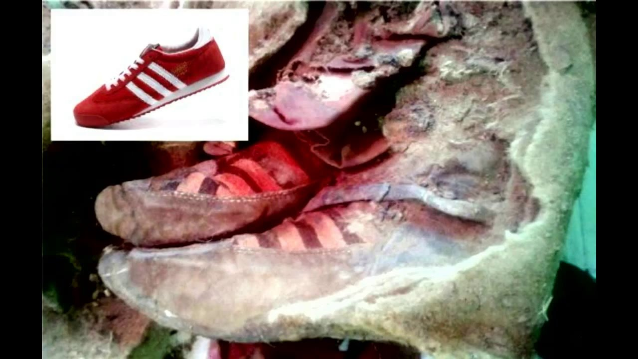 This Ancient Mummy Is Not A Time Traveler Wearing Adidas