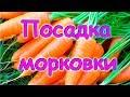 Семья Бровченко. Как экономно и удобно сажать морковь. (06.17г.)