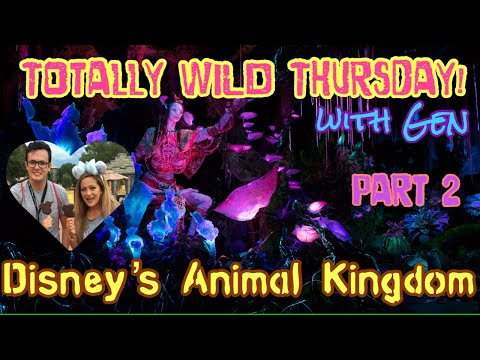 🔴LIVE. Tusker House. Disney's Animal Kingdom.