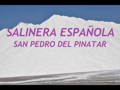 SALINERA ESPAÑOLA - SAN PEDRO DEL PINATAR
