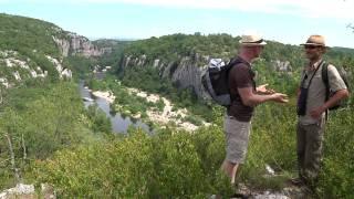 Séjour Cabane dans les arbres | Voyages et weekend en Cévennes (épisode 8 - Bois de Paiolive)