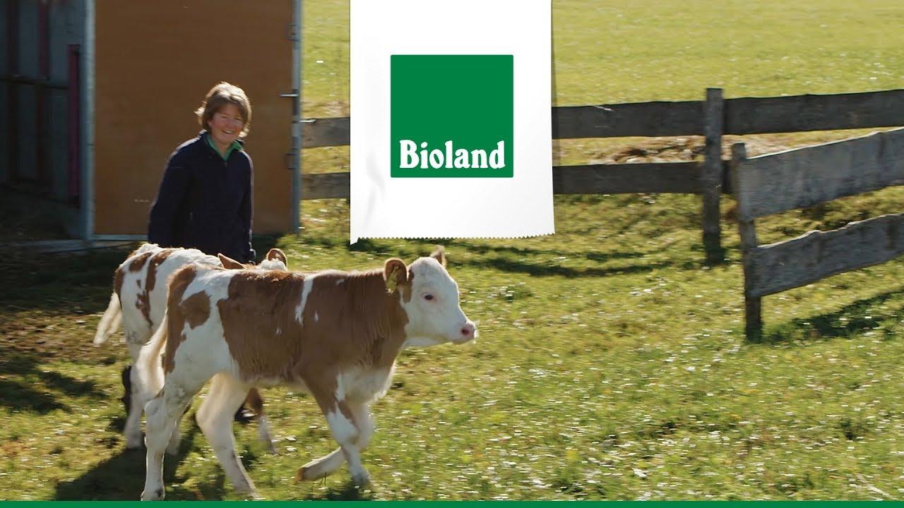 Bioland | Milch Süd | Lidl lohnt sich