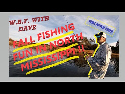 WBF With Dave #2.1 - Fall Fishing Fun In North Mississippi