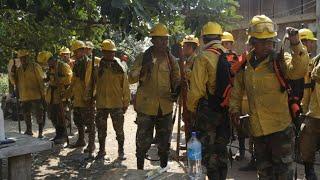 Amazonie: des pompiers boliviens surveillent la région touchée par les incendies | AFP News