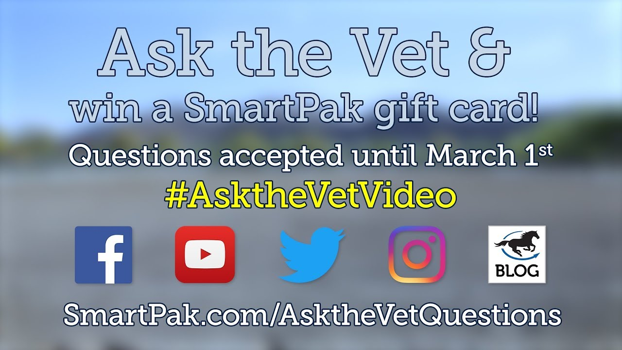 Ask your horse health questions for the April 2019 Ask the