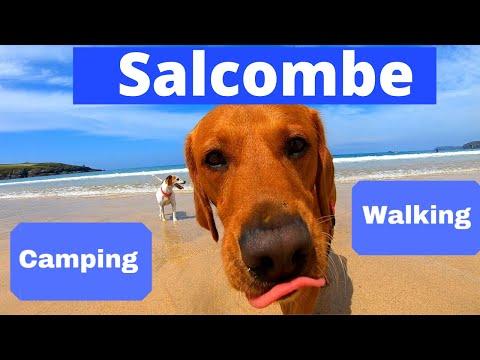 Best Campsite Devon, SALCOMBE, UK, Camping, Walking, Higher Rew Campsite, Gara Rock Hotel