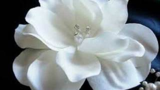 "A Little White Gardenia ""By"" The Demensions"
