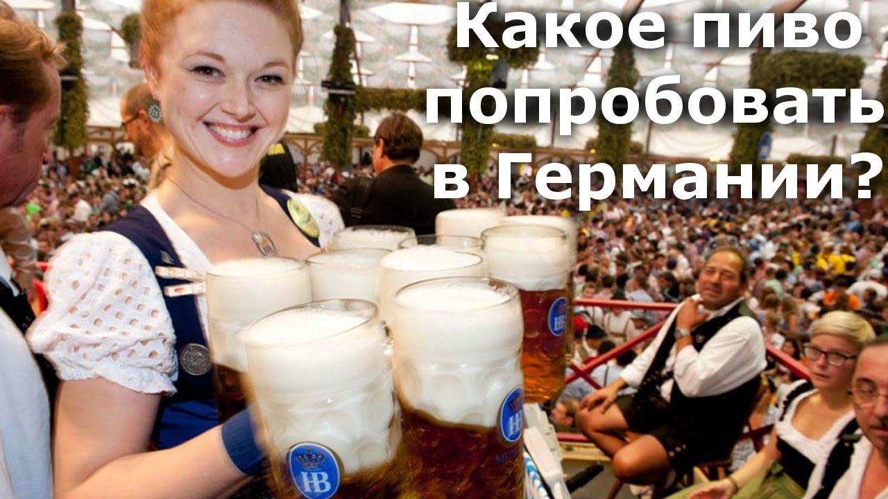 какое крепкое пиво купить? итоги - YouTube
