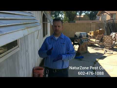 Termites in Tight Places! - Phoenix / Scottsdale Termite Control Treatment - NaturZone Pest Control