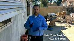 Termites in Tight Places! - Phoenix / Scottsdale Termite Control Treatment - NaturZone Pest Control