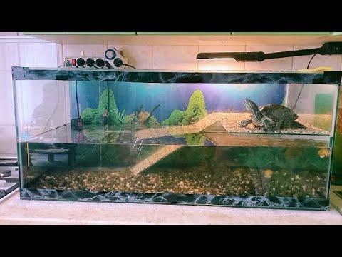 Красноухая черепаха аквариум своими руками