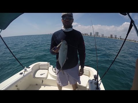 Florida Offshore Saltwater Sight-Casting Fishing