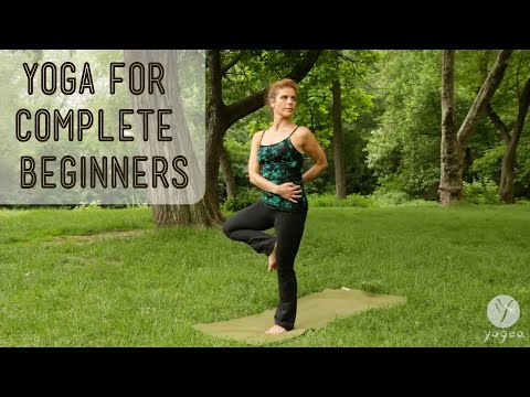 Yoga for Complete Beginners: Cyclic Renewal