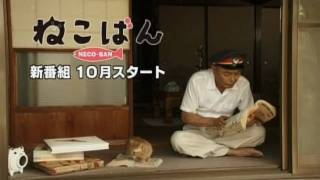 """猫がいる家は、すこし幸せ。 2010年10月スタート、伊武雅刀主演の""""癒し..."""