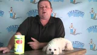 Dog Training Business - The Power Of Follow Up