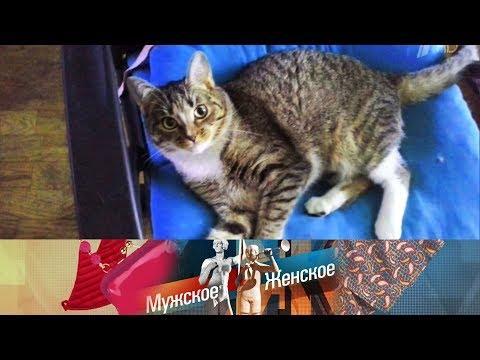 Мужское / Женское Ход котом. Часть 2. Выпуск от 02.04.2018