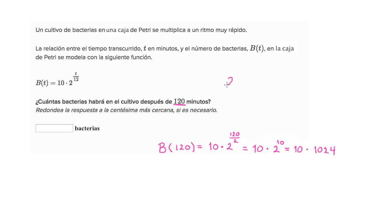 Hermosa Exponencial De Crecimiento Y Decadencia Hoja De álgebra 2 ...