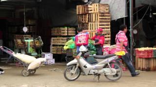 Food speculation fuels Mexico's tortilla crisis thumbnail