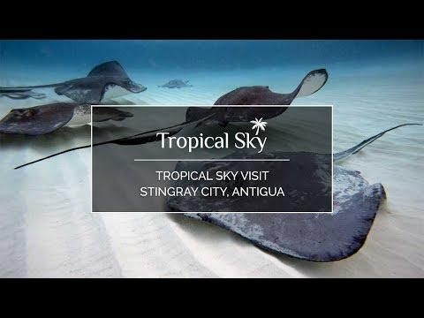 Tropical Sky Visit Stingray City, Antigua - GoPro Video