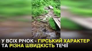 Гірський характер: цікаві факти про річки Карпат
