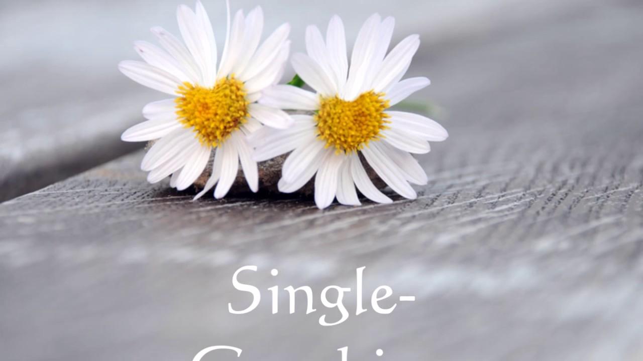 Herzmagie Mann Single Sex nach zweimonatiger Dating