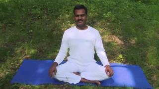 Профилактическая йога: РЕСПИРАТОРНЫЕ ЗАБОЛЕВАНИЯ (видеоурок)