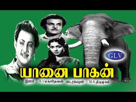 Yanai Pagan | (1960)Tamil Movies Movie | Uday Kumar, B. Saroja Devi, P.S.Veerapa | K.V.Mahadevan