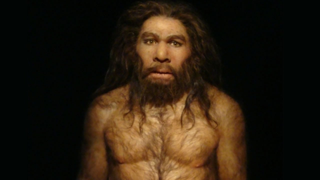 caveman,,neanderthal A...