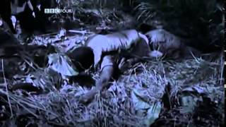 Why America Lost The Vietnam War Full Documentary