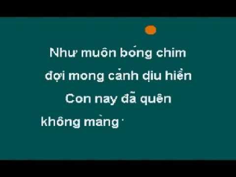 Bờ Đá Xanh Tạ Tội - Karaoke (without voice)
