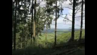 Jakobsweg von Traben Trarbach nach Klüsserath