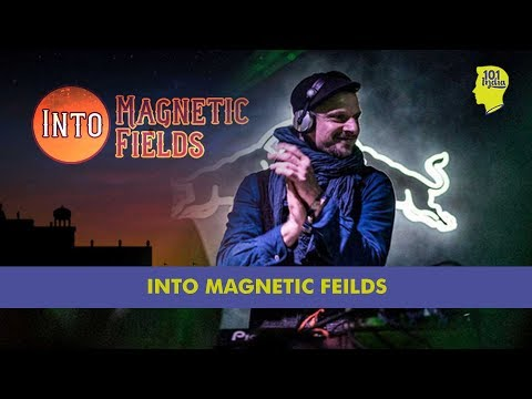 Magnetic Fields: A Weekend In A Rajasthani Palace With Ratatat & Shigeto | Unique Stories from India