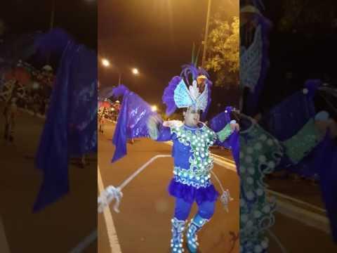 Carnaval de la Alegría-Puerto Iguazú