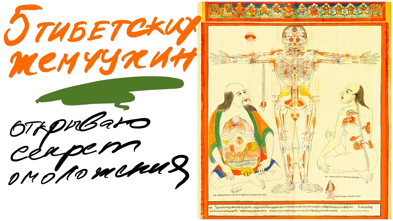 Секреты комплекса 5 тибетских жемчужин (око возрождения)