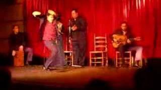 Los Tarantos Flamenco