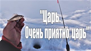 Зимняя рыбалка В поисках хищника Поймал Царя Реки